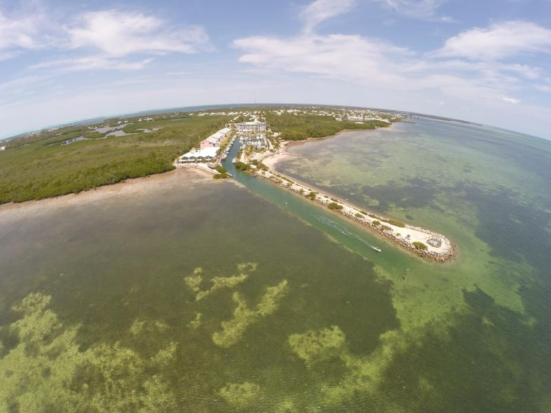 Aerial view of the Complex from the Ocean - Large Waterfront 4 balcony Key Largo Townhouse - Key Largo - rentals