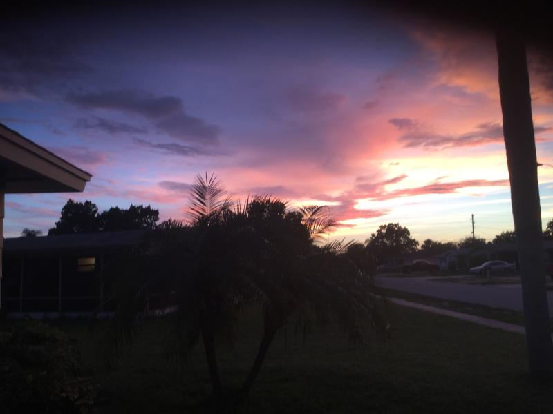 AWESOME SUNSET - WATERFRONT SUNSET BEAUTY - PLENTY OF FUN AND SUN - New Port Richey - rentals
