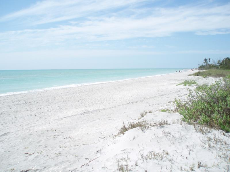 Sanibel's Beaches can't be beat! - Sanibel Island on Bay; 2017 bookings available - Sanibel Island - rentals