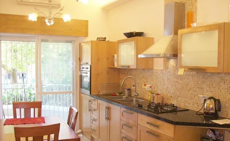 Gan Rechavya Green Fields Kosher Luxury Apartment - Image 1 - Jerusalem - rentals