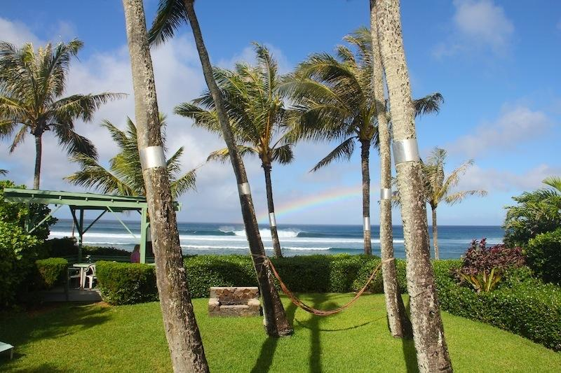 Your backyard:) Covered lanai, hammock, charcoal grill and gorgeous views! - Sunset Beach North Shore Ocean Front Home - Sunset Beach - rentals