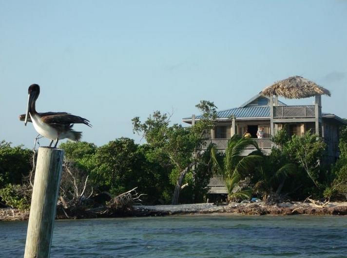 Calypso Beach Retreat Island Getaway - Image 1 - San Pedro - rentals