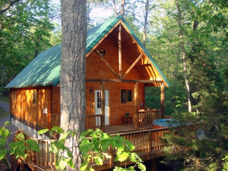 Cast-a-Way Cabin; A Perfect Place to Unwind! - Image 1 - Luray - rentals