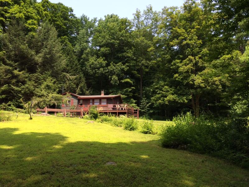 Cottage is surrounded by an amphitheater of trees. - Comfortable Rustic Cottage on 4 Wooded Acres with Brook - West Cornwall - rentals