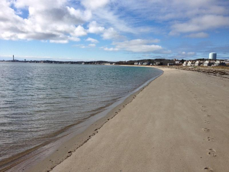 House across the street from the beach. - Remodeled Private House - Across from Beach - Provincetown - rentals
