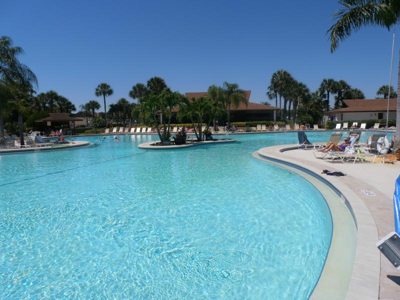 Larges pool in Naples to large to fit in Picture - Winterpark-Naples - Naples - rentals