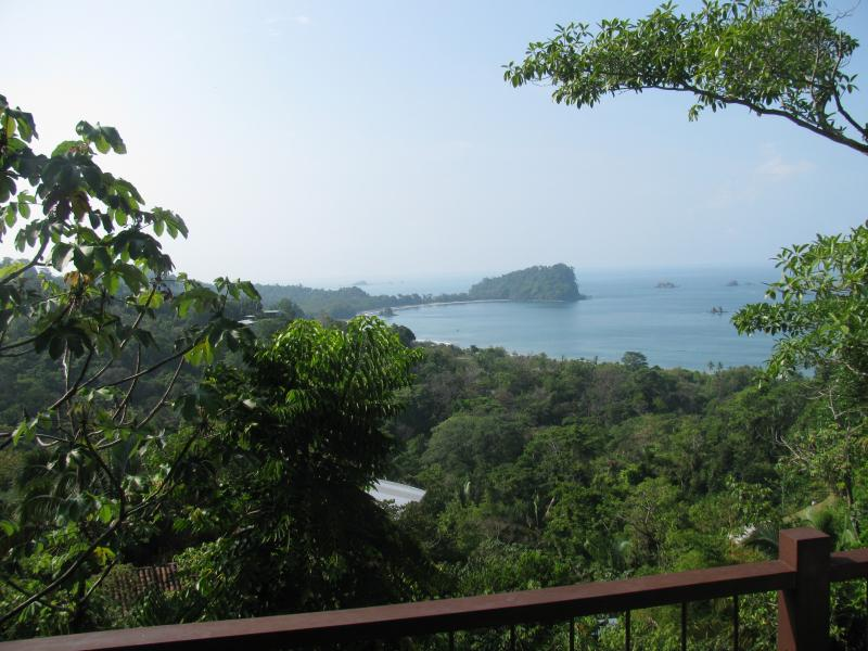 The view! - LUXURY TREE HOUSE WITH AN AMAZING OCEAN VIEW! - Manuel Antonio - rentals