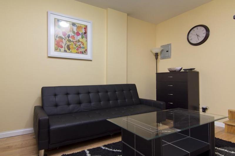 1 Bedroom near Midtown Manhattan - Image 1 - Manhattan - rentals