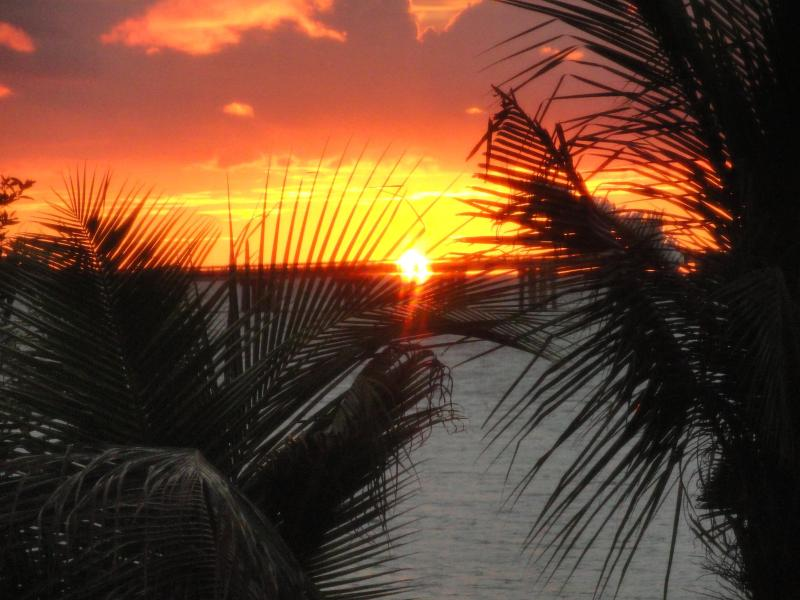 Sunset from the porch - Private Island House On The Water - Longboat Key - rentals