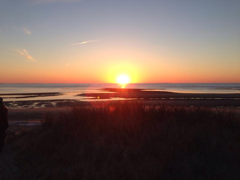 It does't get much better... - Stunning and peaceful, paradise found! - Wellfleet - rentals