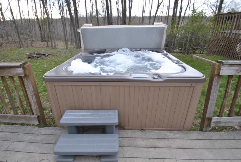 Awesome Hot Tub - Prestige & Glamour Pool Home W/Hot Tub in Town - East Stroudsburg - rentals