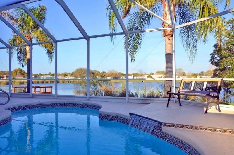 Pool / Lake view - Holiday House In Florida At A Lake - Port Richey - rentals