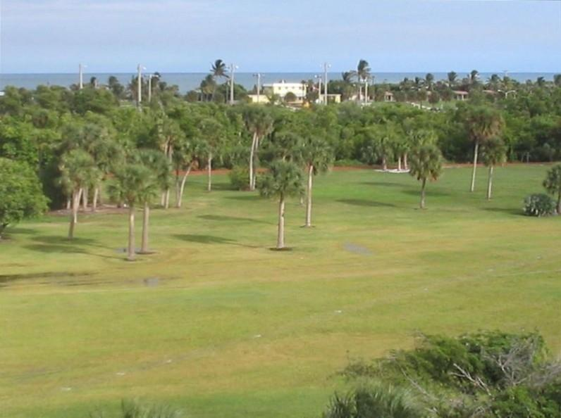 View from back of our building across Carlin Park and ocean is only 700 yards - Jupiter Bay E.-walk To Beach/Pool/Tennis/wifi - Jupiter - rentals