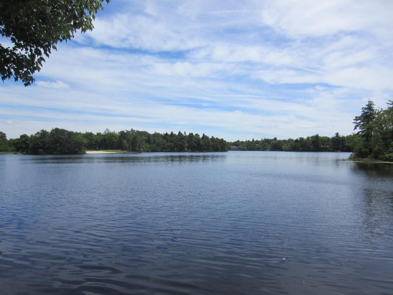 Lake view from the dock - Modern Lakefront Beauty - 8 miles from Camelback! - Long Pond - rentals