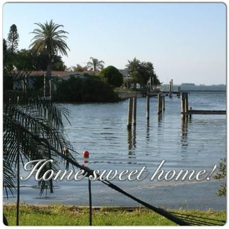 Watch the dolphins and manatee. Enjoy the mullet who jump to entertain you - Swim, Boat Dock, Fish, Waterfront, Sunsets - Clearwater - rentals