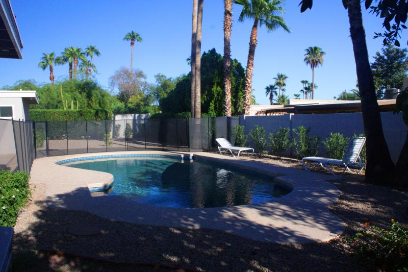 Large 16 X 34 foot heated free form pool - Gorgeous 4 BR, 2BA, Lge Heated Pool, nr R' Shoshan - Scottsdale - rentals