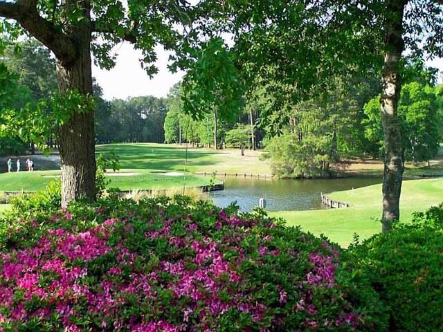 April at Island Green golf course - MYRTLE BEACH in OCTOBER is BEAUTIFUL!!!!!! - Myrtle Beach - rentals