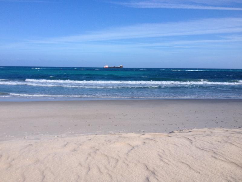 Oceanfront, Beautiful Condo in Jupiter 30 day Min. - Image 1 - Jupiter - rentals