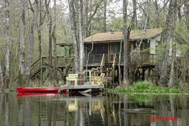 Relax on a Beautiful River in a Natural Florida - Image 1 - Woodville - rentals