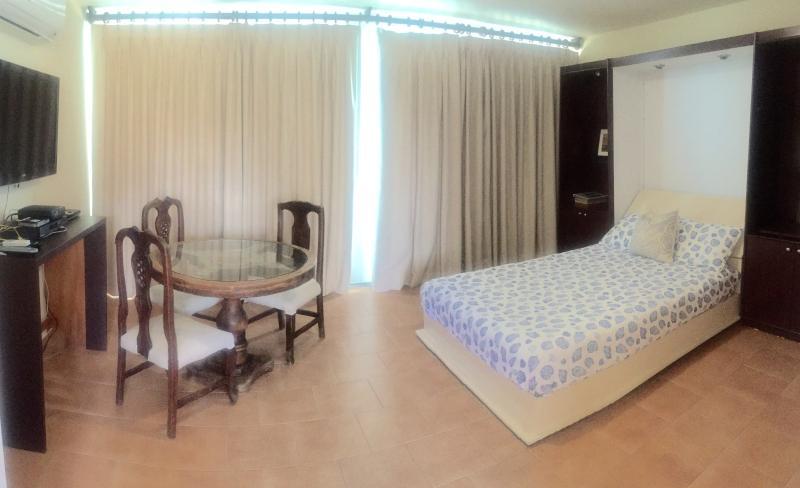 BEACHFRONT STUDIO NEXT TO CONDADO MARRIOTT HO - Image 1 - Miramar - rentals