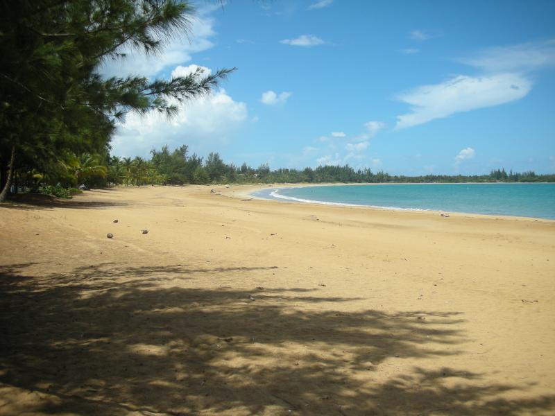 Yunque Mar Resort Pool Front Villa - Image 1 - Rio Grande - rentals