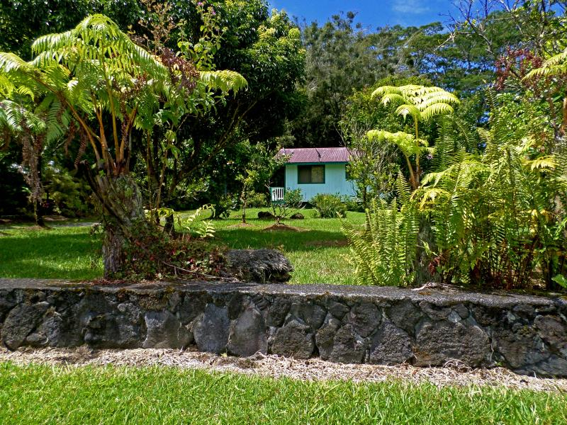 Hale Akule through the Hapuu' Ferns! Mahalo John and Kathi! - Full Hawaiian Cottage@Studio Price! Hale Akule! - Pahoa - rentals