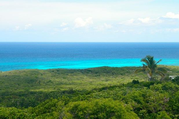 View of Atlantic from upstairs front porch - Cloudbreak, the Highest Ocean and Island View - Gregory Town - rentals