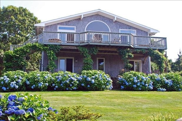 House draped in wisteria and hydrangeas - Magnificent Contemporary on Exclusive Point - Falmouth - rentals