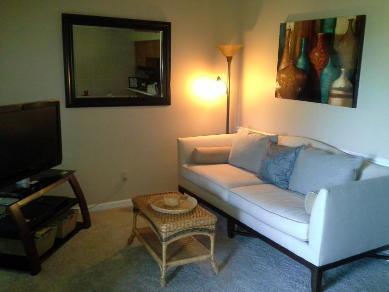 Adorable 1 bedroom at Pointe Royale*Amenities Pets - Image 1 - Branson - rentals