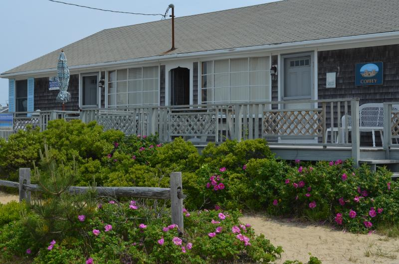 Cape Cod cottage just steps from private ocean beach! - Image 1 - West Dennis - rentals