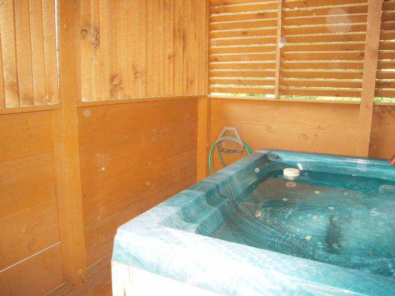 Large HOT TUB in privacy gazebo by door to main floor bedroom - Lake Mohawk close to Dollywood w/view & free Wi-Fi - Pigeon Forge - rentals
