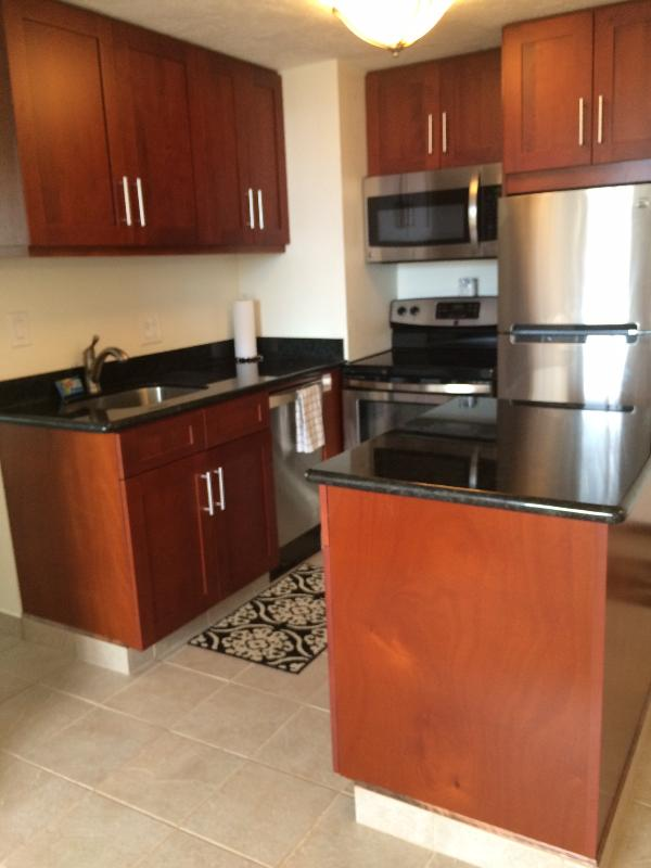 Remodeled kitchen with granite counters, stainless appliances, fully furnished. Tiled floors. - Waikiki 1 BR, #2920 lovely ocean, city, mtn. views - Honolulu - rentals