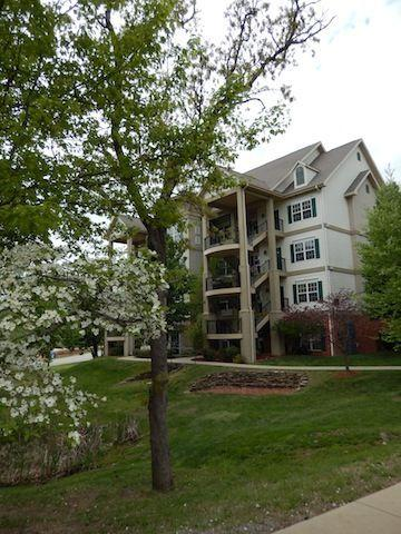 VERY nice 1 Bdm condo! 2 complimentary tickets! - Image 1 - Branson - rentals