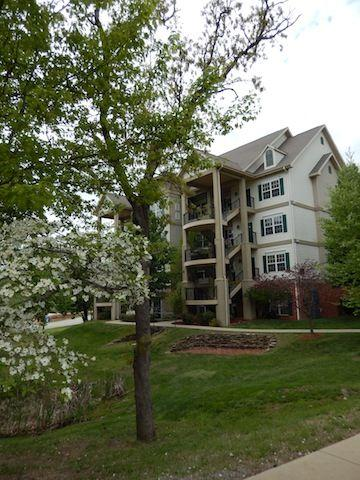 Beautiful! - 1 bdrm condo - Excellent location! nice & clean! - Branson - rentals