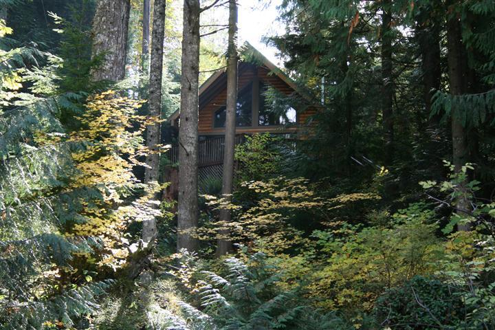 The Riverview Chalet on the Sandy River - Riverview Chalet a Dog Friendly, Sandy Riverfront - Rhododendron - rentals