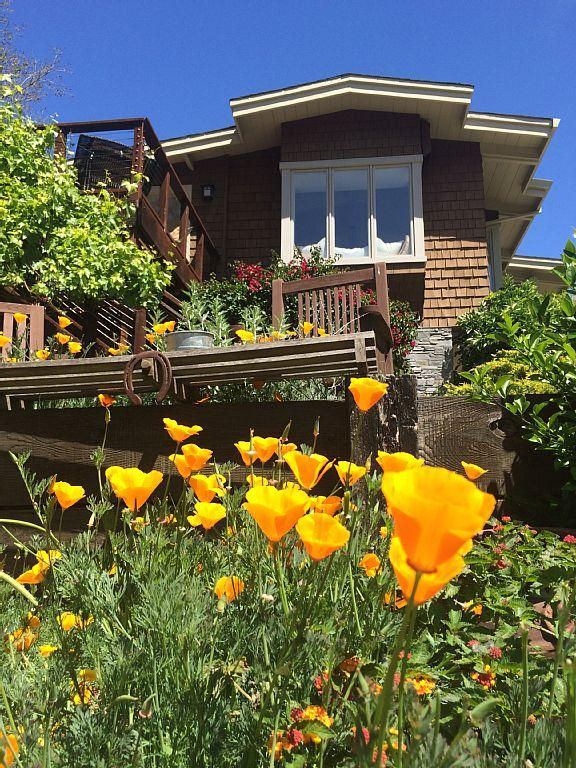 Beautiful Woodside Retreat for August - Image 1 - Woodside - rentals