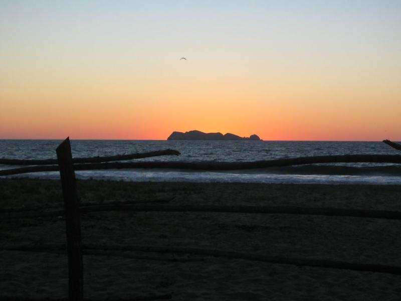 Gorgeous Virgin Beach 16 Kilometers - Image 1 - Zihuatanejo - rentals