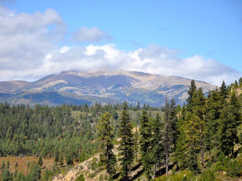 Ski House in Enchanted Forest - Image 1 - Ruidoso - rentals