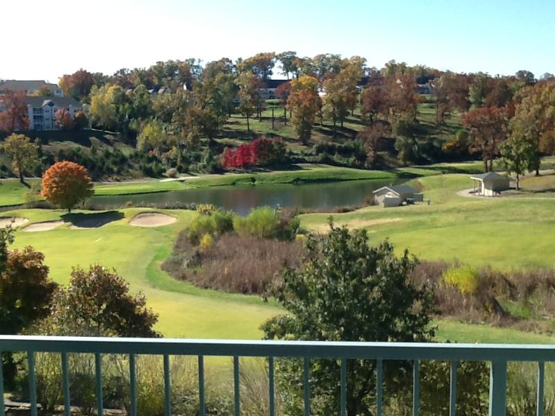 Beautiful View of the Greens - Rest of 2016 just  99/nt*excludes holidays Strip - Branson - rentals
