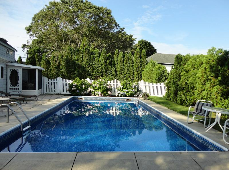 16'x36' Private Pool. Great for laps. - Hamptons Retreat, Pool & Spa - East Quogue - rentals