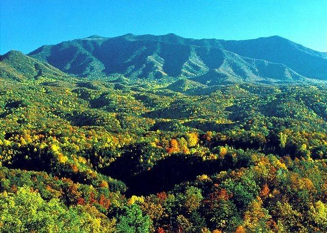 Panoramic Mtn View;New Hot Tub;WIFI; Granite - Image 1 - Gatlinburg - rentals