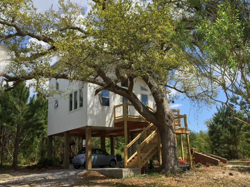 Eco Beach House in the Trees - Image 1 - Waveland - rentals
