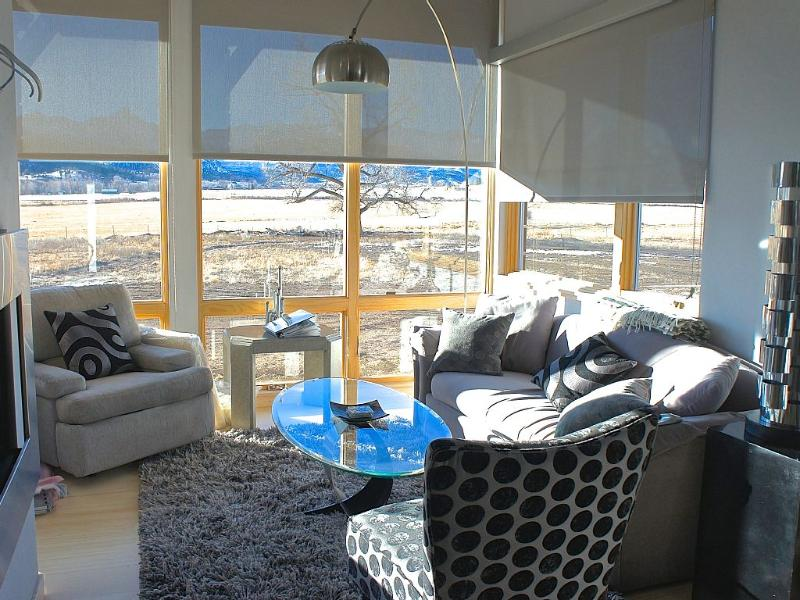 Living Room - Fully Furnished Modern Guest House -STUNNING VIEWS - Ridgway - rentals