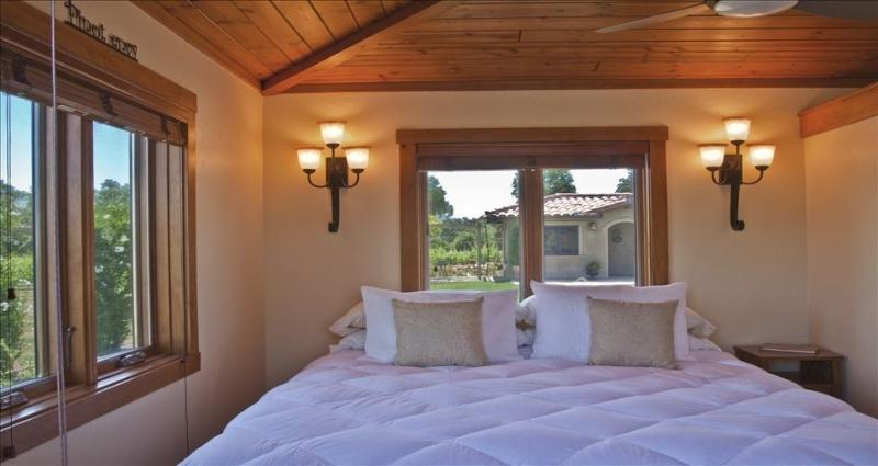 Stay Among the Vines in an Italian Casa! - Image 1 - Santa Ynez - rentals