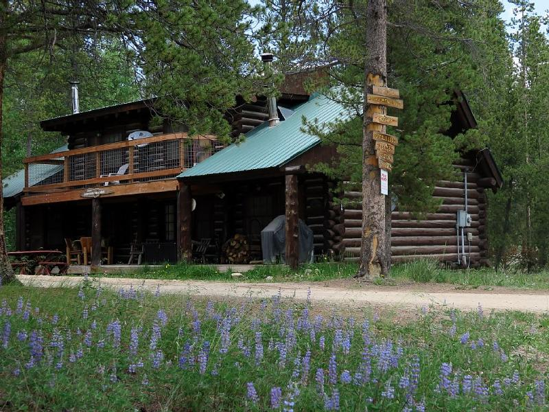 Spring time wild flowers bloom around Whispering Pines Lodge - 3 BR Log Home by Private Lake with Use of Boats & Bikes near RMNP - Grand Lake - rentals
