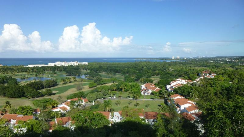 Magnificent View from Vista Hermosa! - Luxurious Villa With Spectacular View - Rio Grande - rentals