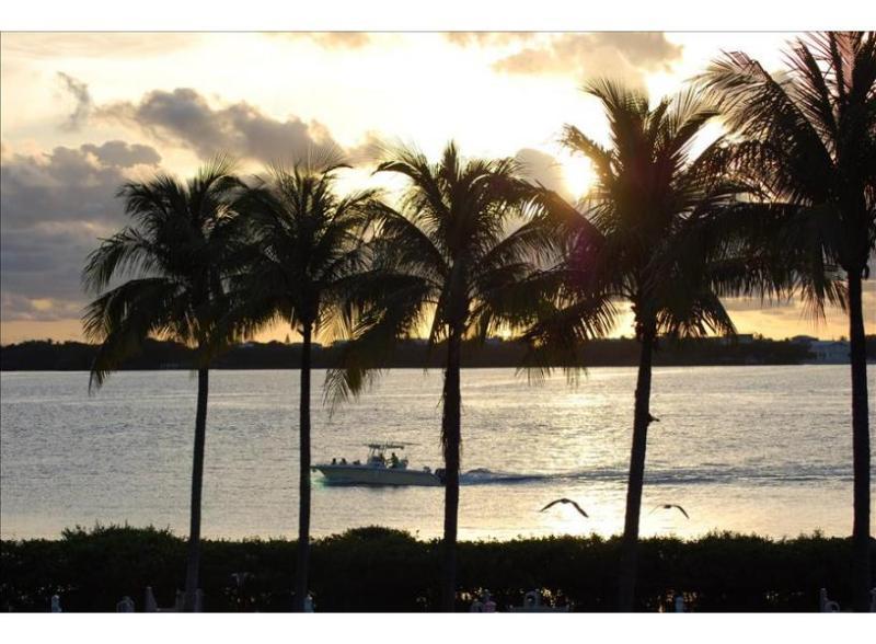 Indigo Reef Villa 60 - Image 1 - Marathon - rentals