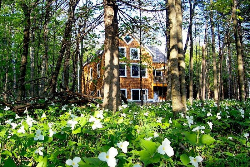 The Surf Cottage in the spring during the trillium bloom. - OPEN ALL YEAR*Newer Home w/ Sandy Beach Lake Mich! - Harbor Springs - rentals