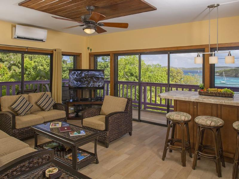 Newly Remodeled W/Magnificent View, Walk to Town - Image 1 - Cruz Bay - rentals