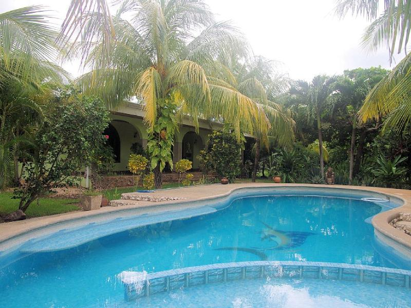 Large Pool!  Kiddy area at one end and 8 feet deep at the other. - New Short Term Rental! Luxury Home - Brasilito - rentals